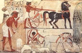 Une civilisation avancée il y a plus de 12800 ans ? l'Égypte à voir - Page 3 Chariot10
