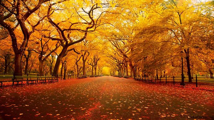 C'est l'Automne . Central-Park-New-York-Automne-blog-voyage-trace-ta-route