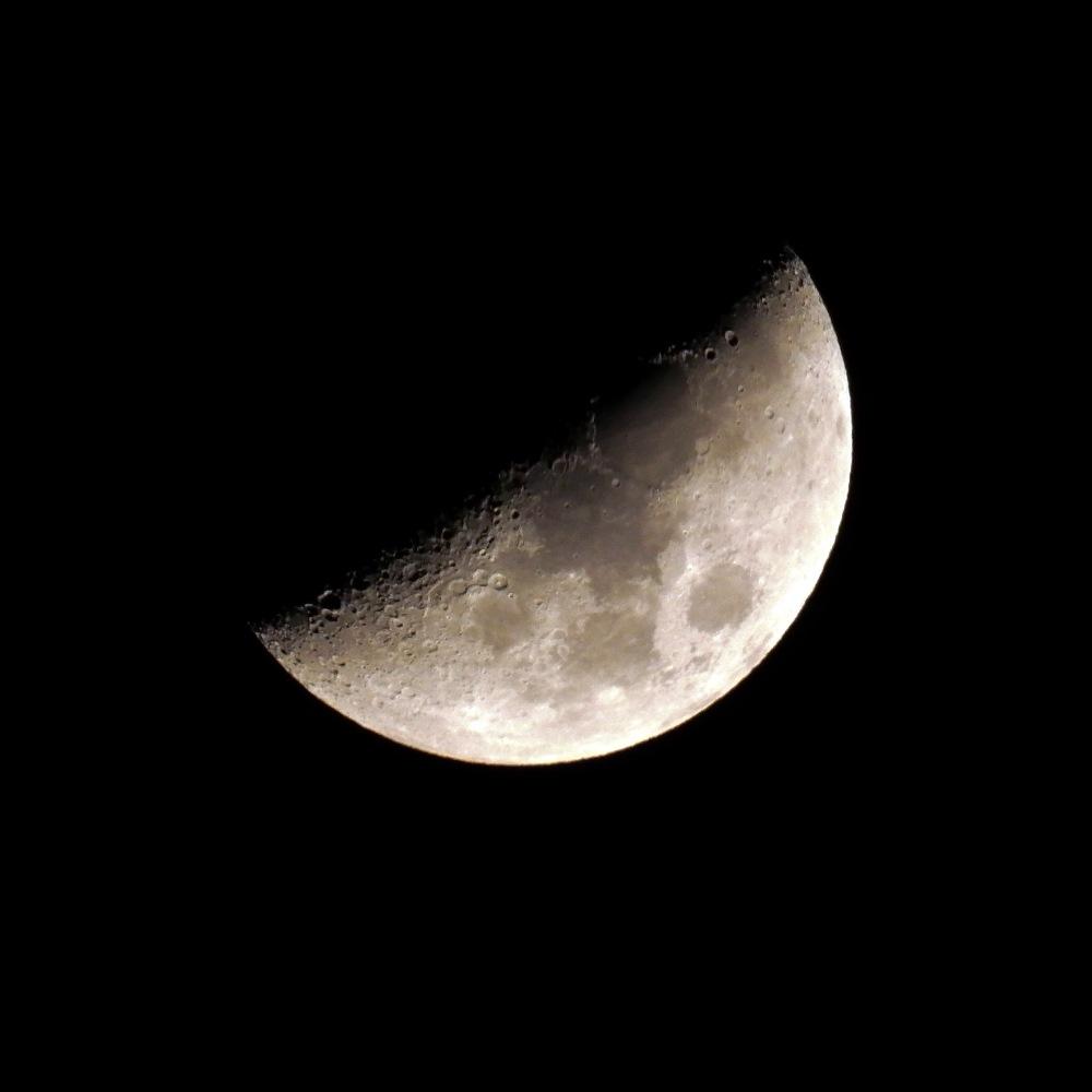 Lune du 21/11/2020 SDIM8018