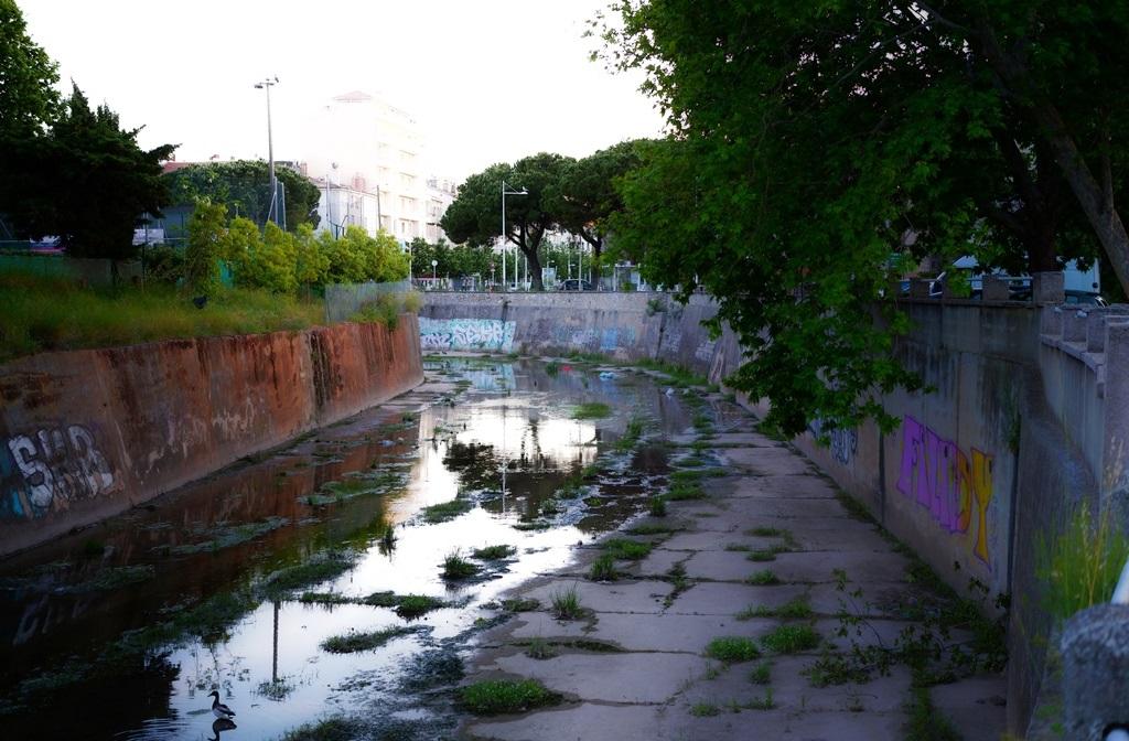 rivière des amoureux .. SDIM0128