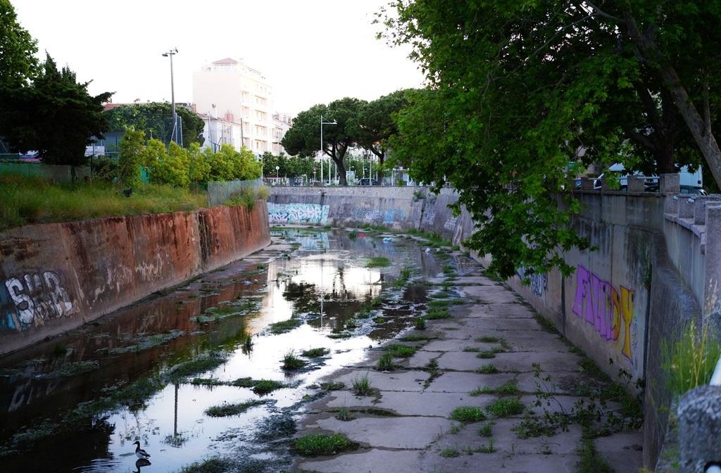 rivière des amoureux .. SDIM0129