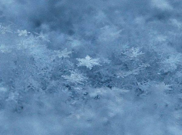 Блог-2 (фото из Интернета) Snow
