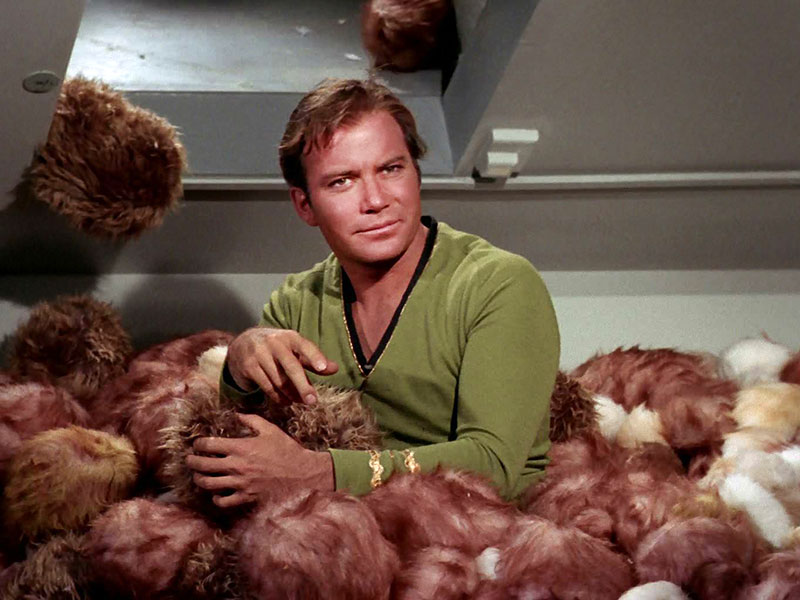 [Jeu] Association d'images - Page 20 Star-trek-trouble-with-tribbles-kirk