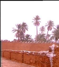 Le Sahara recouvert de neige en Algérie [Video] Le-Sahara-recouvert-de-neige