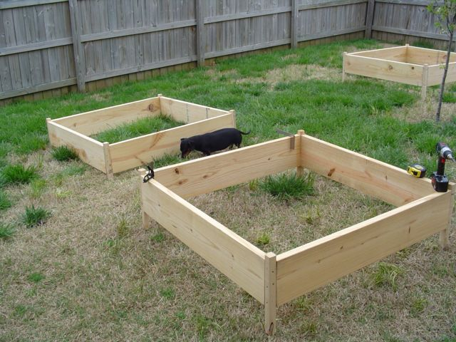 Building the garden and first year results. Building07small