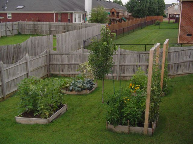 Building the garden and first year results. Overview01small