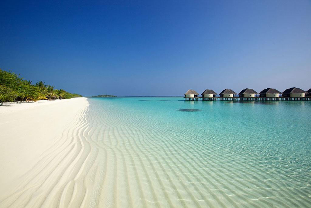 Maldivi Maldivi_1