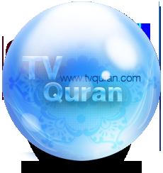 برنامج المحترفين (TORRENT)MATCHMOVER PRO V4.1 Tvquran_35