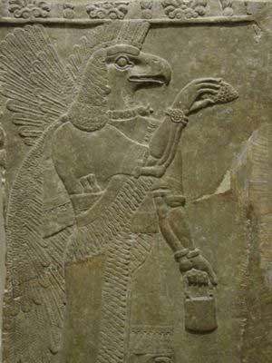 Anunnaki Bird - Flying Being Consciousness Merkabah