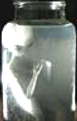 Néphilim, Nuée armures de lumière Alieninattic2