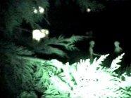 Néphilim, Nuée armures de lumière Alienlondon2t