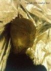 Néphilim, Nuée armures de lumière Alienreed1t