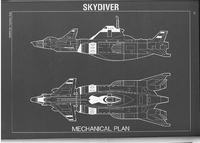 Officers of D.I.C.E SgBlueSkydiver