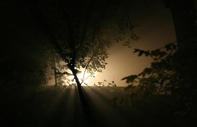 Kroz maglu...  - Page 2 Nebel