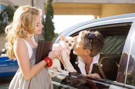 [Walt Disney Pictures] Le Chihuahua de Beverly Hills (2008) Bhc1