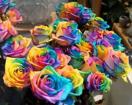 جمال تلك الزهور Large_i_1354051976