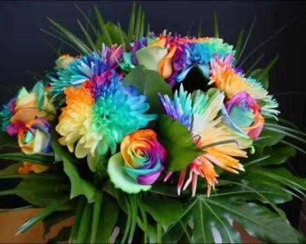 جمال تلك الزهور Large_t_1354051975