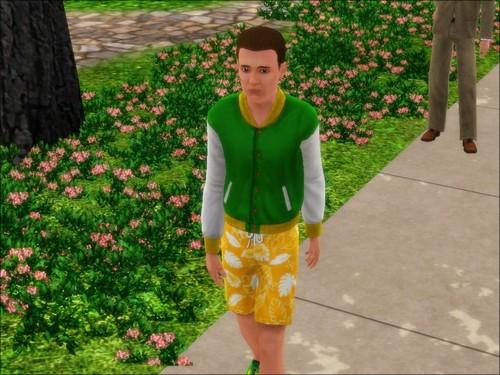 The Blossom family - 1.5 Screenshot-16