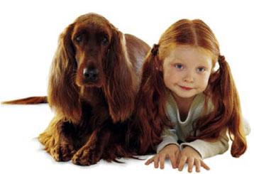Psi i ljudi postaju sve sličniji Slicnost-ljudi-i-psa2