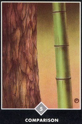 Ошо Дзен Таро , галерея таро и значения - Страница 3 Swords05