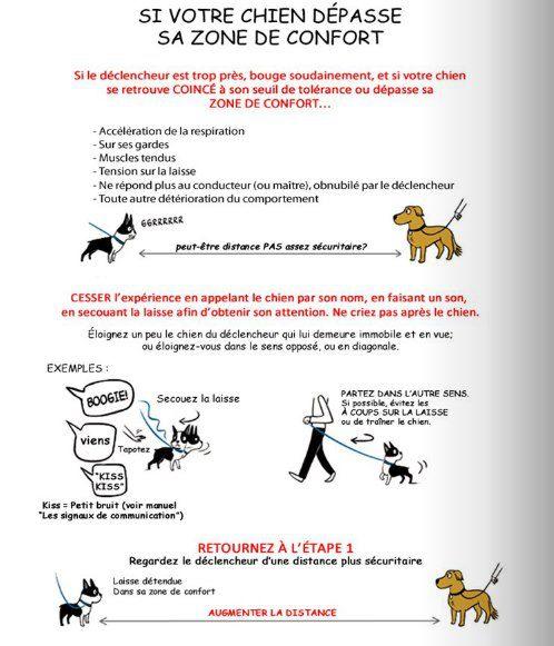 possessif - Post-it: le chien agressif / réactif Zone-de-confort-chien