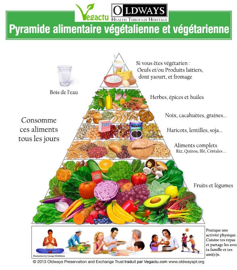 Vegan Attitude - Page 2 Pyramide-alimentaire-vegetalienne-vegetarien