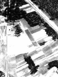 The Holocaust/Holohoax - Page 3 BallTreblin1k