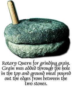 Récolte et préparation de céréales semi sauvages RotaryQuern