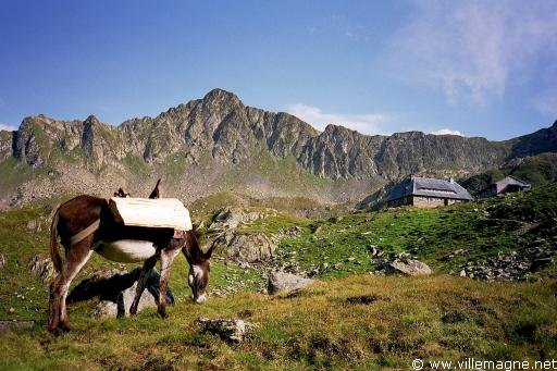 [Jeu] Nutellaaaaaah Carpates-refuge-de-podragu-dans-le-massif-des-fagaras-roumanie-ru38