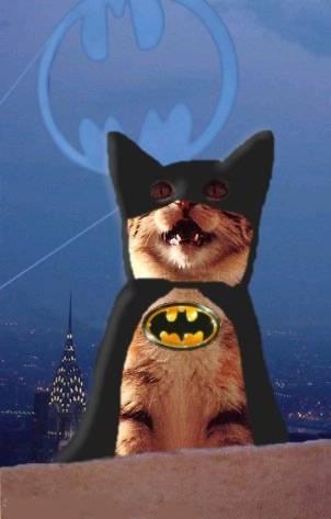 Jeux d'image (point à gagner) - Page 2 Batman-film