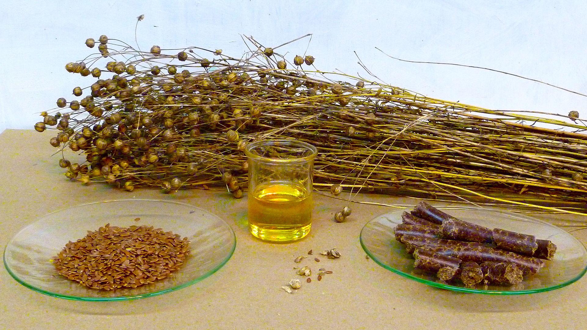 HẠT LANH - THỰC PHẨM KHÔNG THỂ TỐT HƠN CHO SỨC KHỎE Flaxseed1
