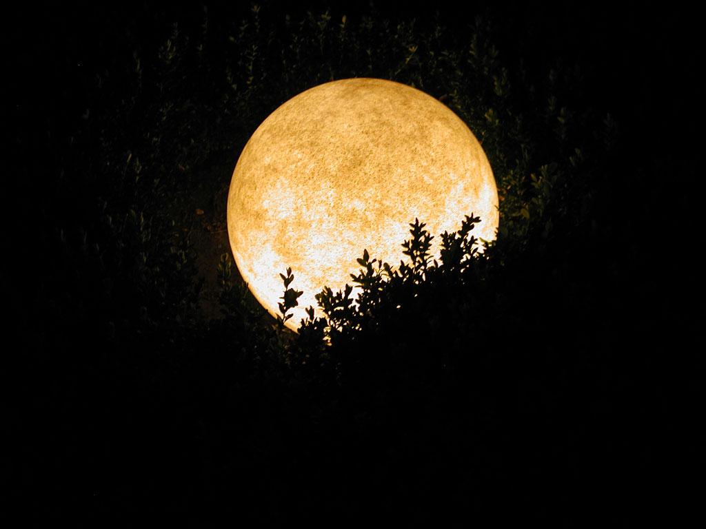 Tamna je noć... Bild-nacht-8353