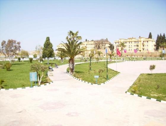 صور رائعة بمدينة تلمسان Med-la-ville-de-tlemcen-visoterra-12129