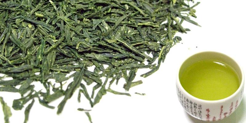Foro de Salud y Bienestar Te-verde