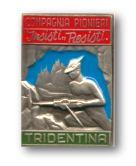 Compagnia Genio Pionieri Tridentina