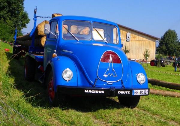 Traktorentreffen am Bodensee 20100822_bulldog_ot_treff_grasb019_detail