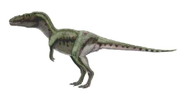 DinoWorld RPG Alioramus-aa