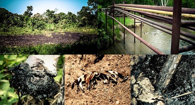 Nature en boite... - Page 3 Amazonie-pollution