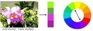 تأثير اللون على المستخدم. Clip_image008_thumb