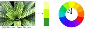 تأثير اللون على المستخدم. Clip_image009_thumb2