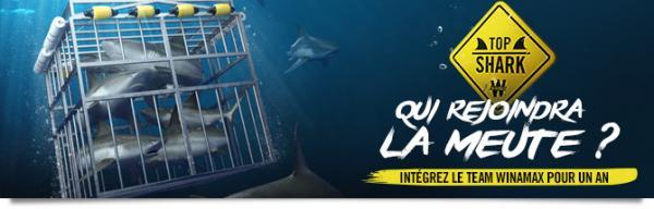 Top Shark Academy : le Team ouvre ses portes 11233125915dbaf1b37773f