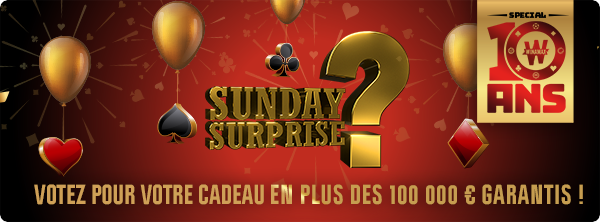 Sunday Surprise anniversaire : c'est votre projet ! 12860025445ef9e4ebee3f9
