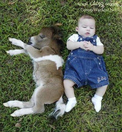 زينة الحياة الدنيا Cute-Babies11
