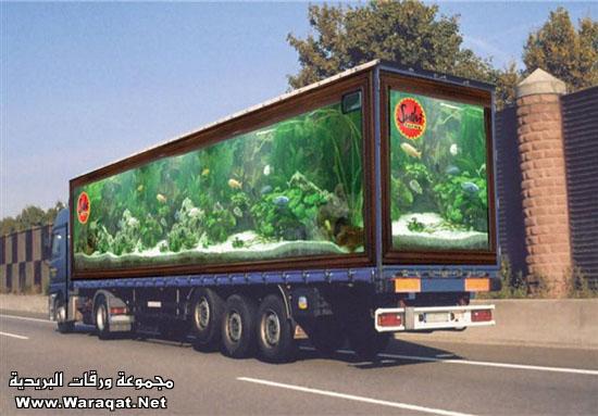 خداع بصري على شاحنات ألمانية : Photo4