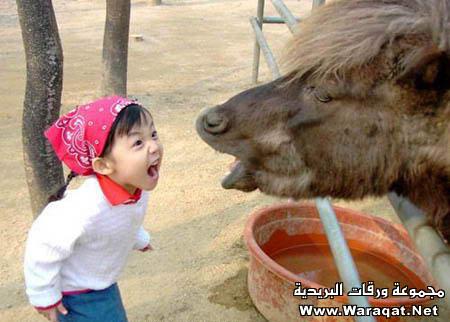 زينة الحياة الدنيا Cute-Babies23