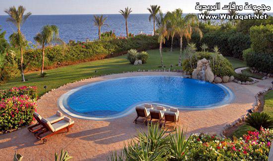 هل تريد زيارة مصر للسياحة ؟ تعال معي أدلك Nice_Pictures_from_Egypt14