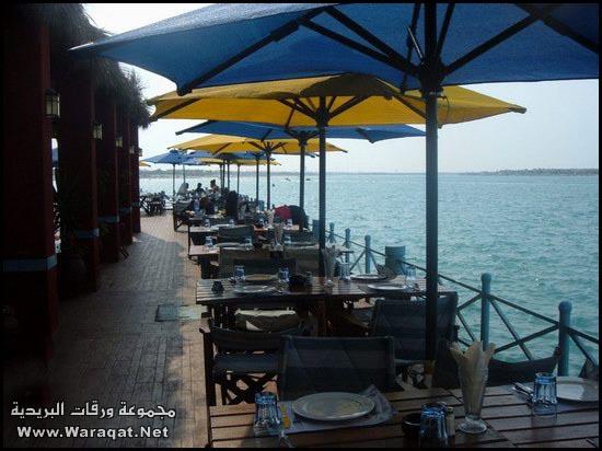 هل تريد زيارة مصر للسياحة ؟ تعال معي أدلك Nice_Pictures_from_Egypt4