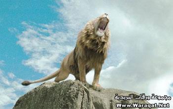 قصه الزوْجة ُ والأسد تجعلك اسعد خلق الله اقسم لكى Lion2008