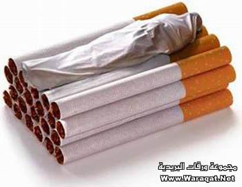 {{آخــي،،، توقف... إقرأأ.. أرجو التثبيت .. Smoking1