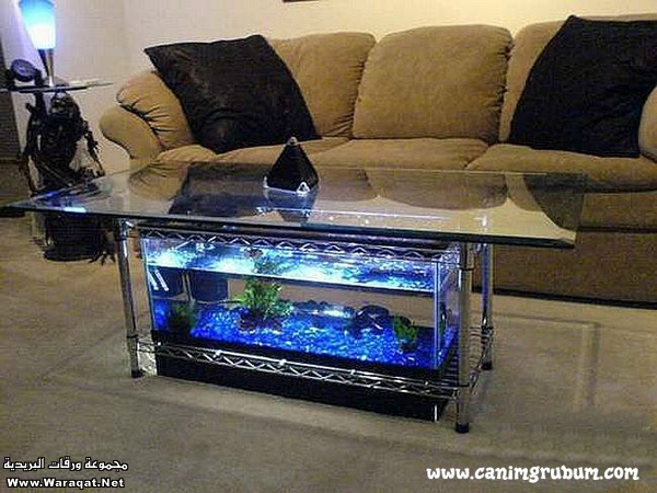 صور احواض السمك على شكل طاولات  A7oad-fish_10